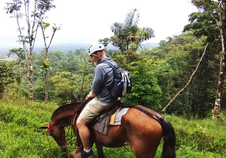 Wild Life and Horseback Riding Through the Rain Forest tour