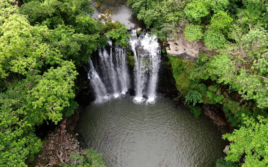 Rain forest, Wild life, Waterfall and Chocolate Tour